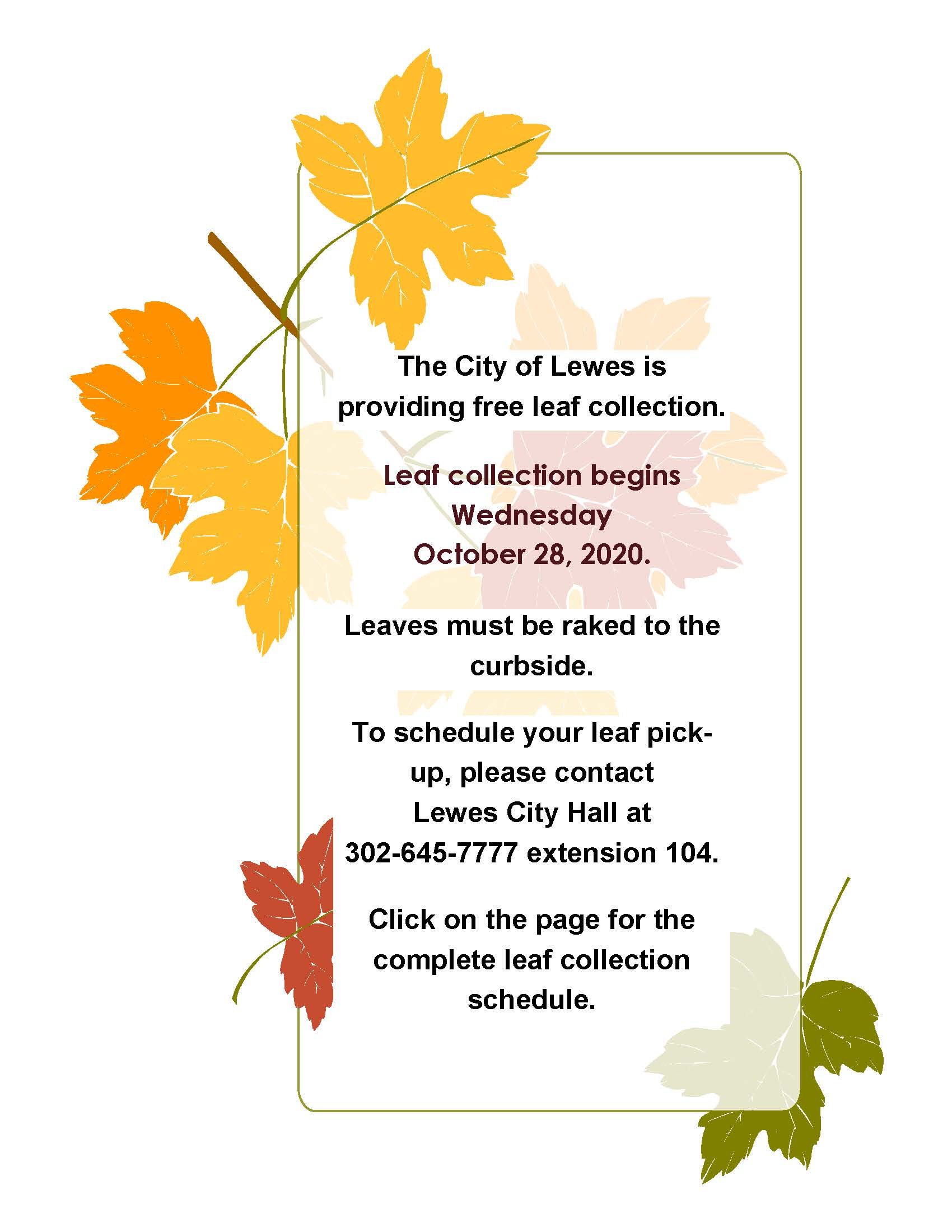 leaf collection 2020a